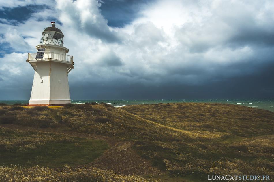 Catlins, Nouvelle-Zélande : photographie de paysage