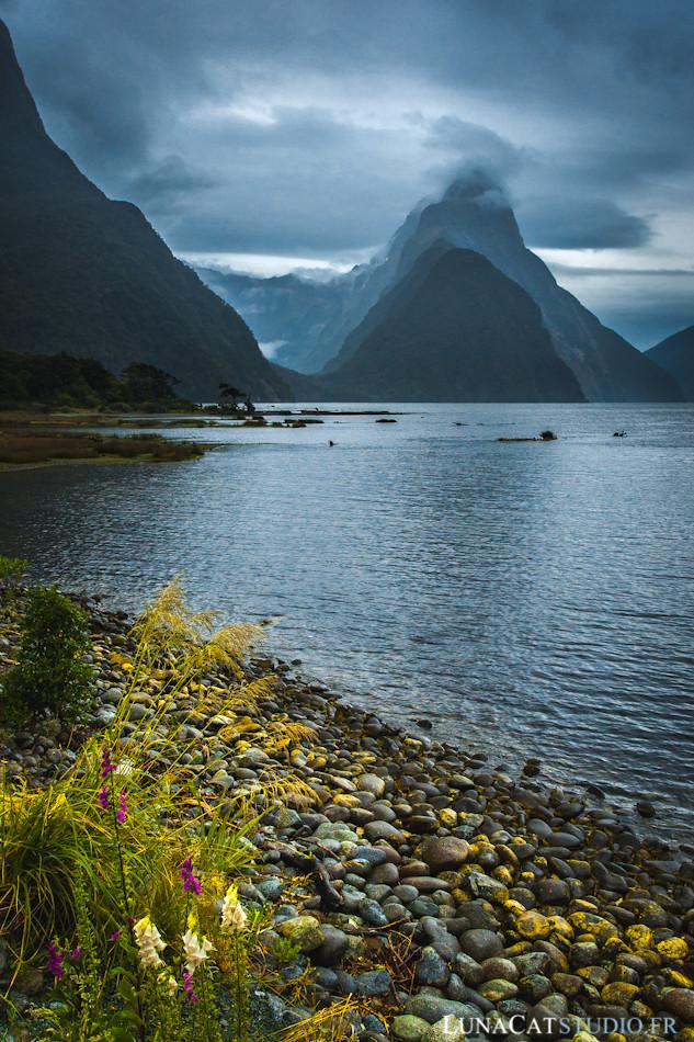 Milford Sound, Nouvelle Zélande : photographie de voyage