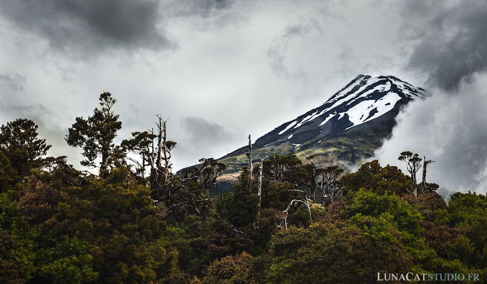 Mont Taranaki, Nouvelle-Zélande : photographie de paysage
