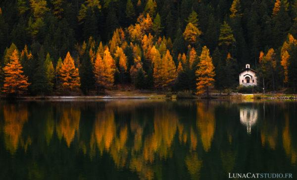 photographe nature automne