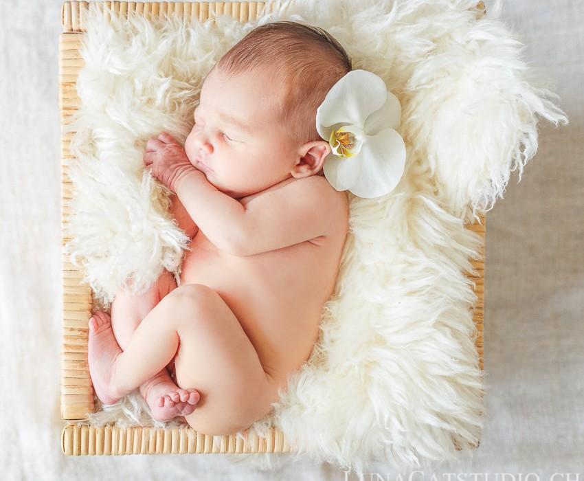 photographe nouveau-né Delhia