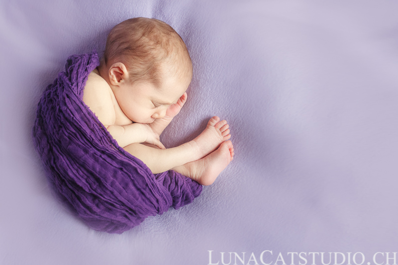 newborn photographer iris
